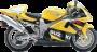 Suzuki TL 1000 R 98-03